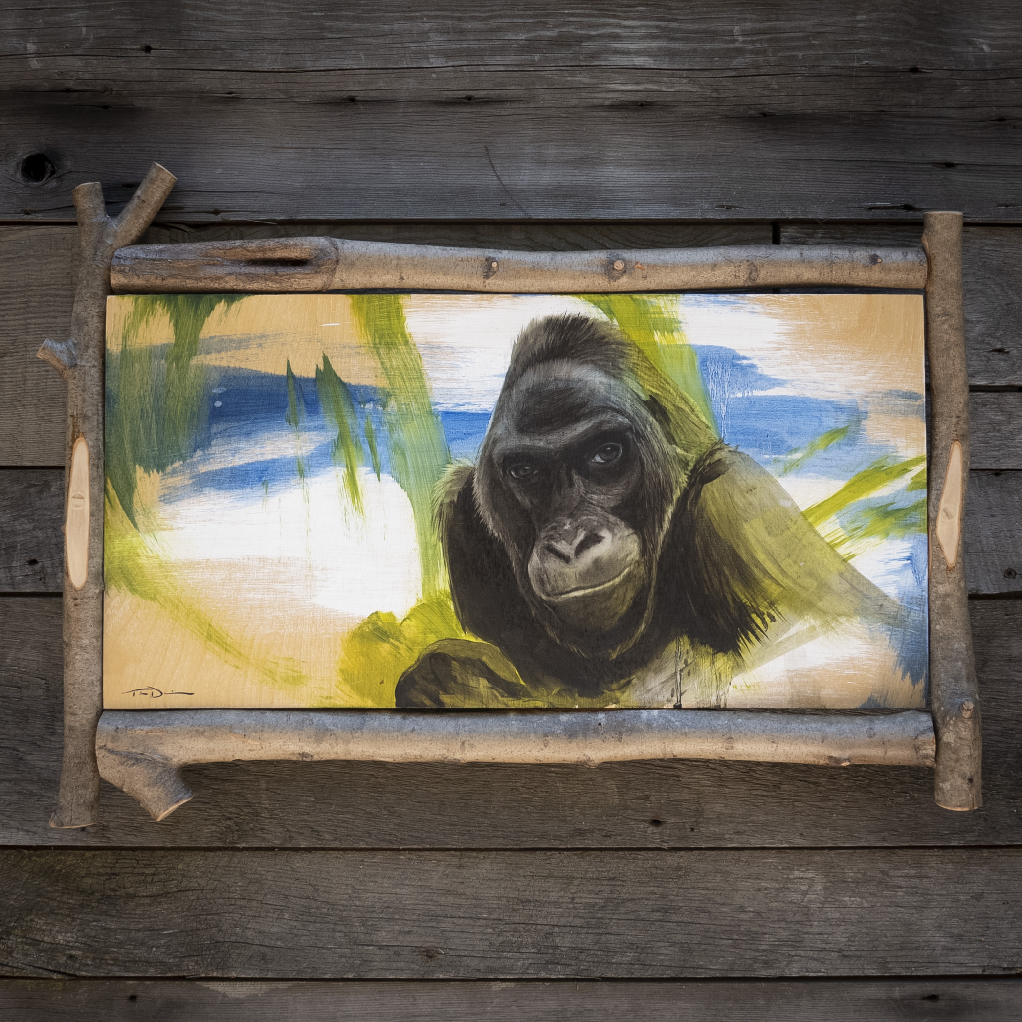 Colo - Original oil painting by wildlife artist Timothy Tim Davison of the Davison Art Company featuring Colo the gorilla, the first western lowland gorilla born in captivity. Also, the oldest gorilla on record. Painted shortly after her death in 2017. Framed in a custom driftwood frame.