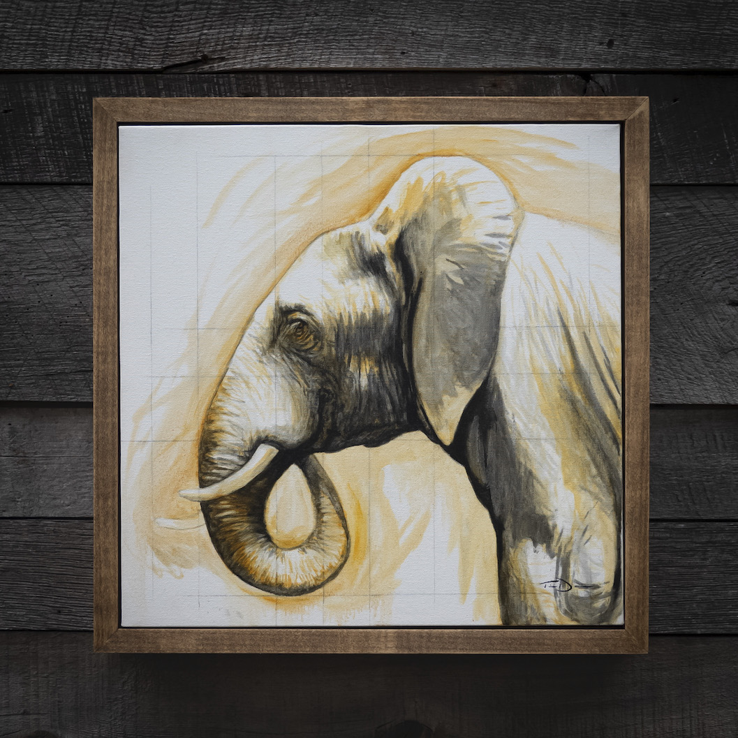 Elephant Profile - Original oil painting by wildlife artist Timothy Davison of the Davison Art Company featuring an African elephant facing sideways, a profile showing the proportions of the elephant's head and ears. Framed in a custom hardwood floating frame. © COPYRIGHT TIMOTHY DAVISON