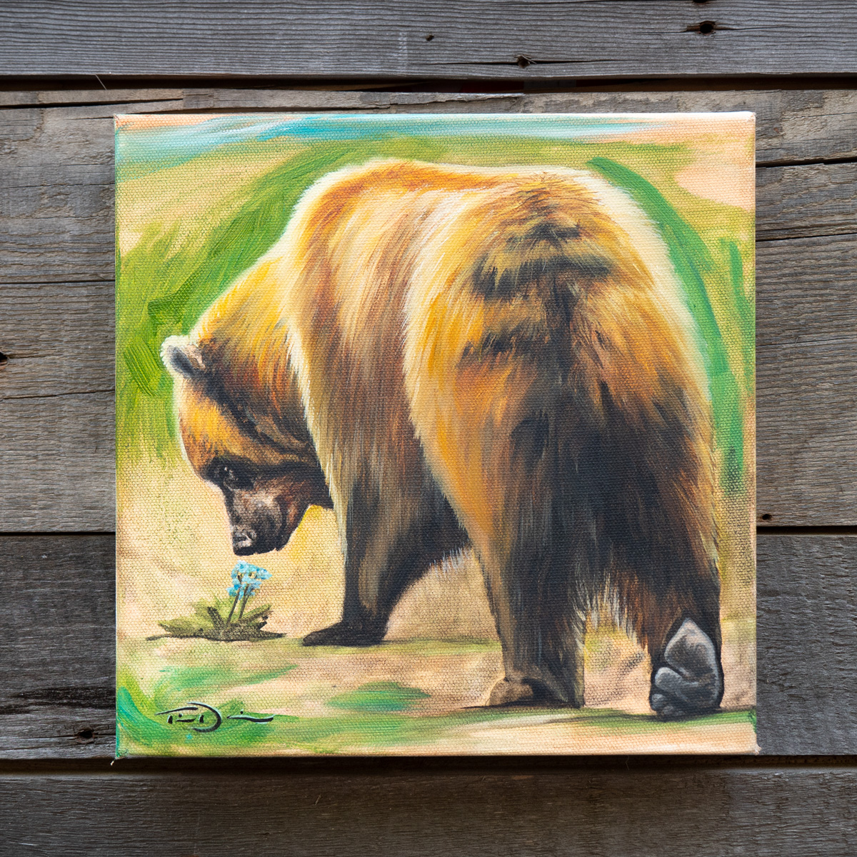 Forget Me Not Bear - original oil painting by Timothy Davison of the Davison Art Company featuring a grizzly bear smelling a forget me not flower, the state flower of Alaska