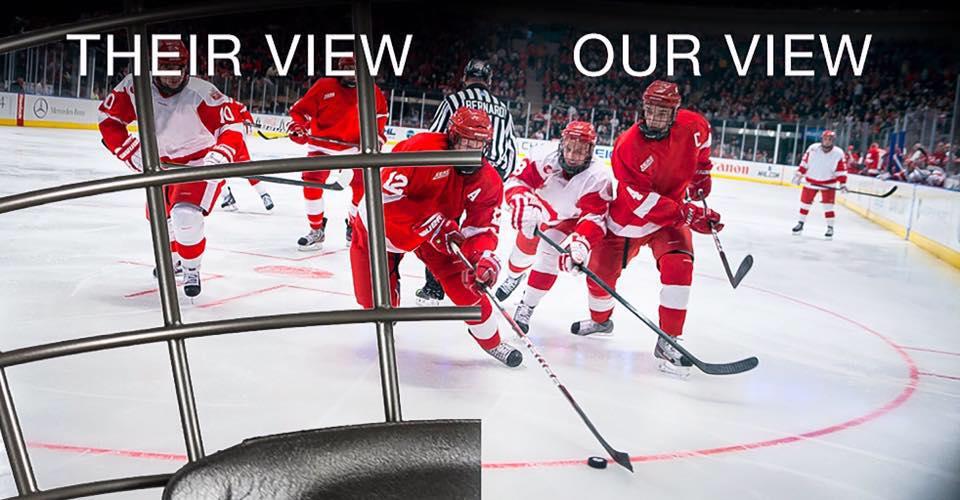 BHS vision comparison