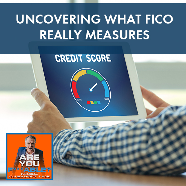 AYF 50   What FICO Measures