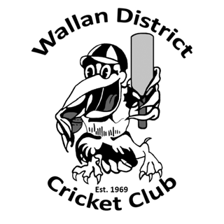 wallan cricket