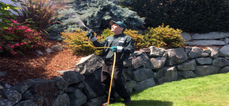 Landscape Pest Treatment