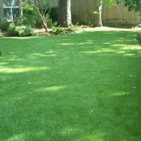 synthetic-turf-houston