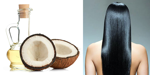 Coconut oil indian beauty hair treatment