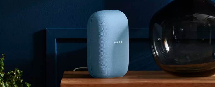 Image from the Verge and Google - New Smart Speaker from Google
