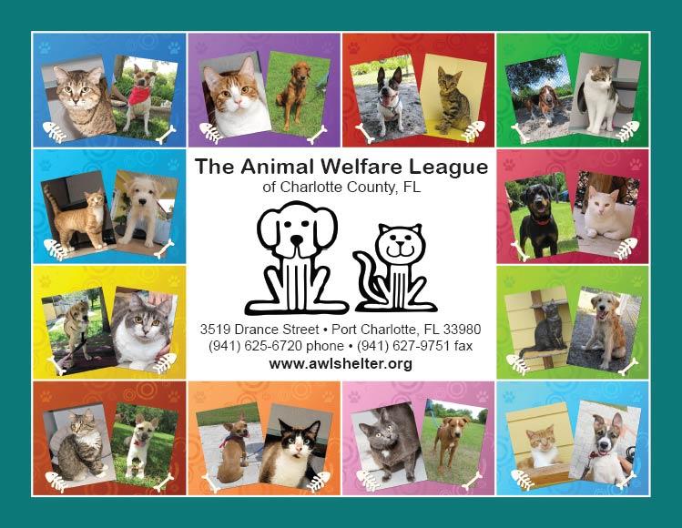 The Animal Welfare League