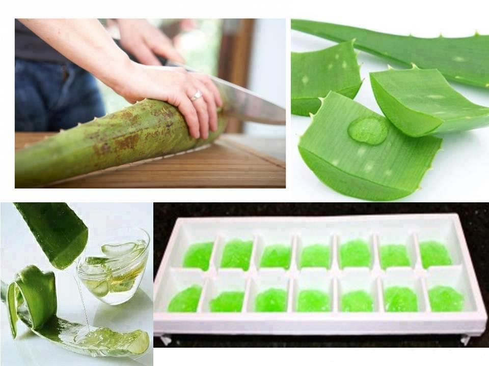 health benefits of aloe vera