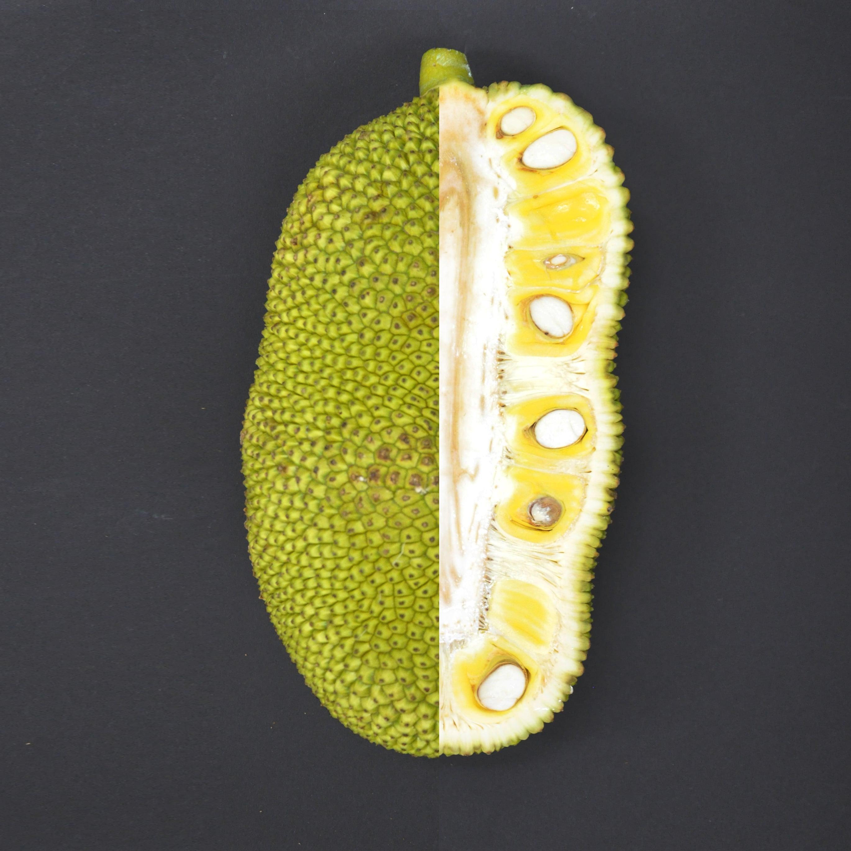 What is Jackfruit