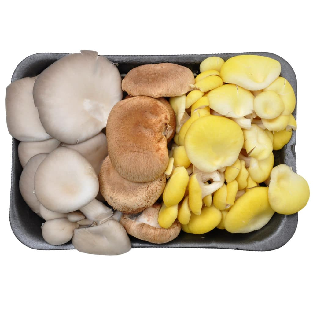 Variety Mushrooms