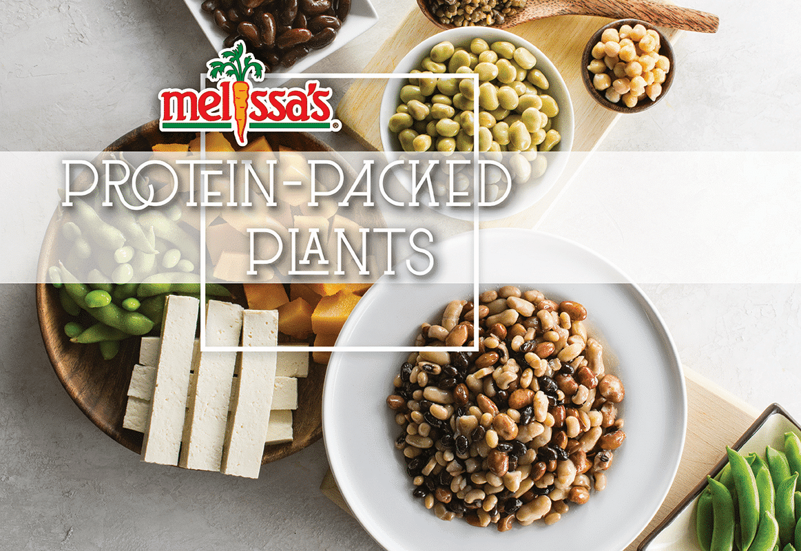 Plant-Based Protein eBook