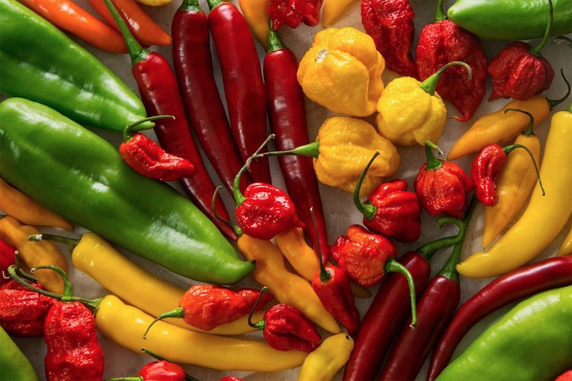 Know Your Chile Peppers: The Ultimate Guide l chile peppers on white