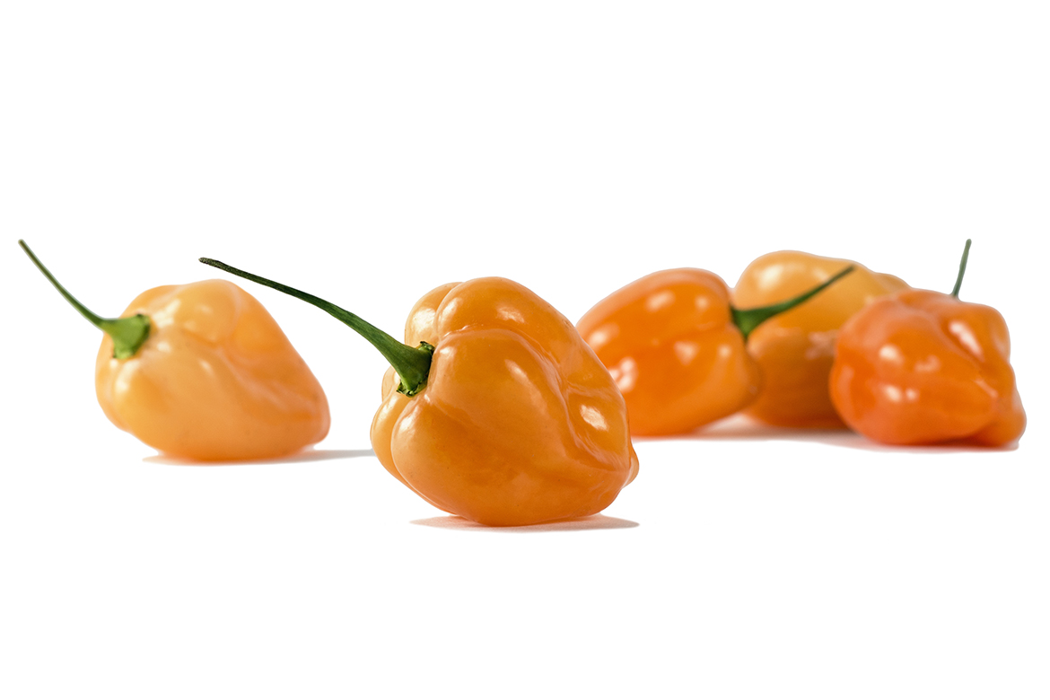 Know Your Chile Peppers: The Ultimate Guide l habanero chile peppers on white