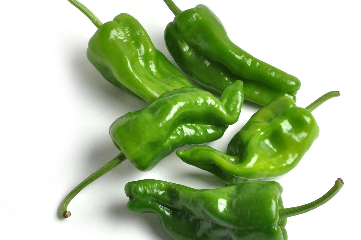 Know Your Chile Peppers: The Ultimate Guide l padron chile peppers on white