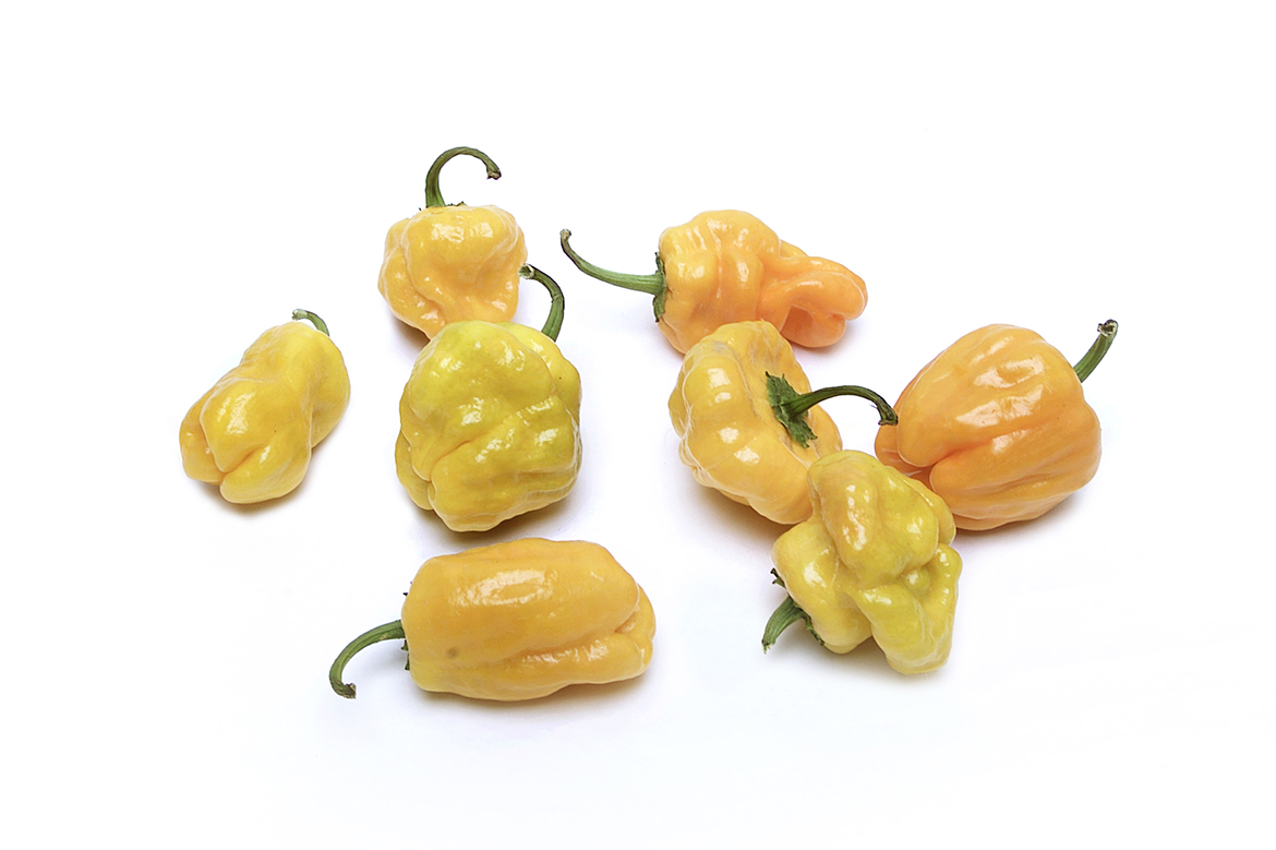 Know Your Chile Peppers: The Ultimate Guide l scotch bonnet chile peppers on white