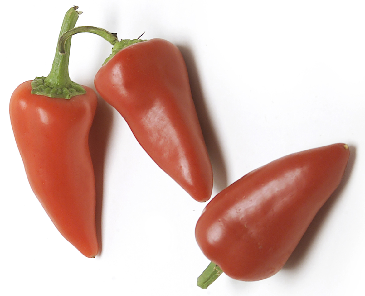Know Your Chile Peppers: The Ultimate Guide l red fresno chiles peppers on white