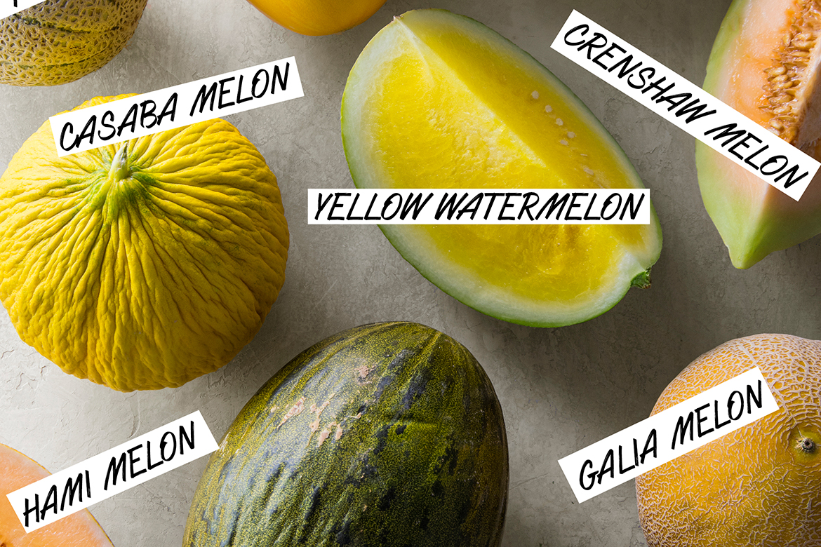 Visual Guide to Melon   melon varieties, canteloupe, yellow watermelon