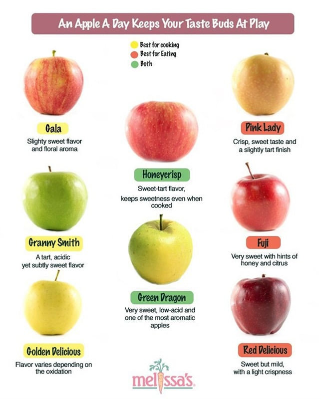 20+ Amazing Apple Recipes for Fall l apple infographic