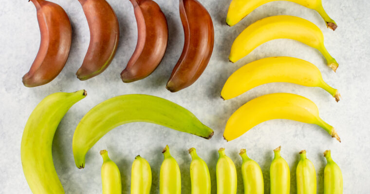 A Visual Guide to Bananas