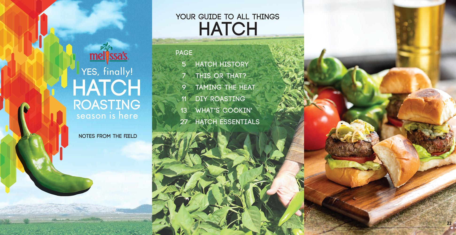 Booklet-Hatch2021-landingpage
