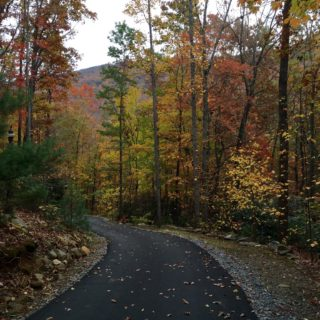 The Road to the Huntley is Paved - The Cove at Fairview Vacation Rentals - Asheville NC