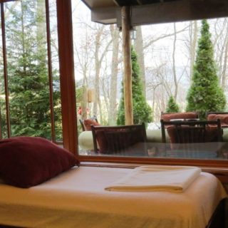 My Place has a day bed in the living room - The Cove at Fairview - Vacation Rentals- Asheville, North Carolina