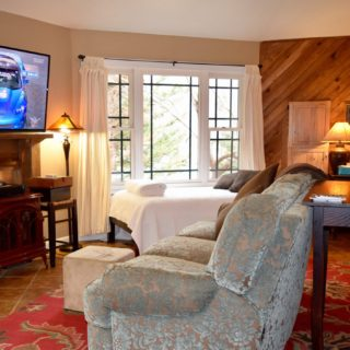 My Roundette comfy sofa - The Cove at Fairview - Vacation Rentals - Asheville, NC