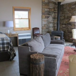 Ample seating in Prayer Ridge living room - The Cove at Fairview vacation rental - Asheville, North Carolina