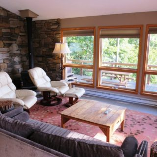Seating in Prayer Ridge living room - The Cove at Fairview vacation rental - Asheville, North Carolina