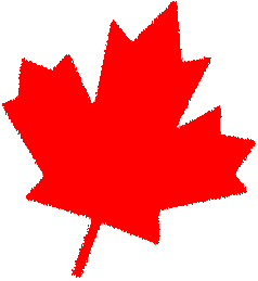 red canadian maple leaf facing right