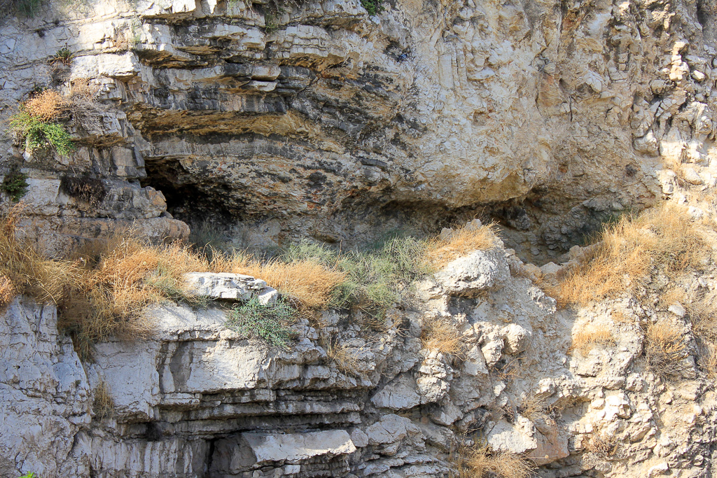 Tour Day 5: Masada, En Gedi, St. George's Monastery, Jerusalem (Old Cemetery, Garden of Gethsemane, Garden Tomb)