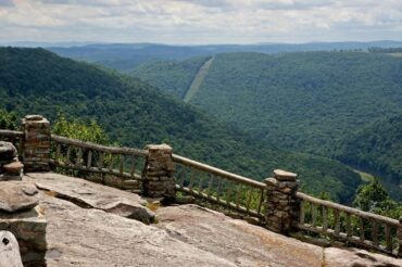 coopers-rock-state-forest