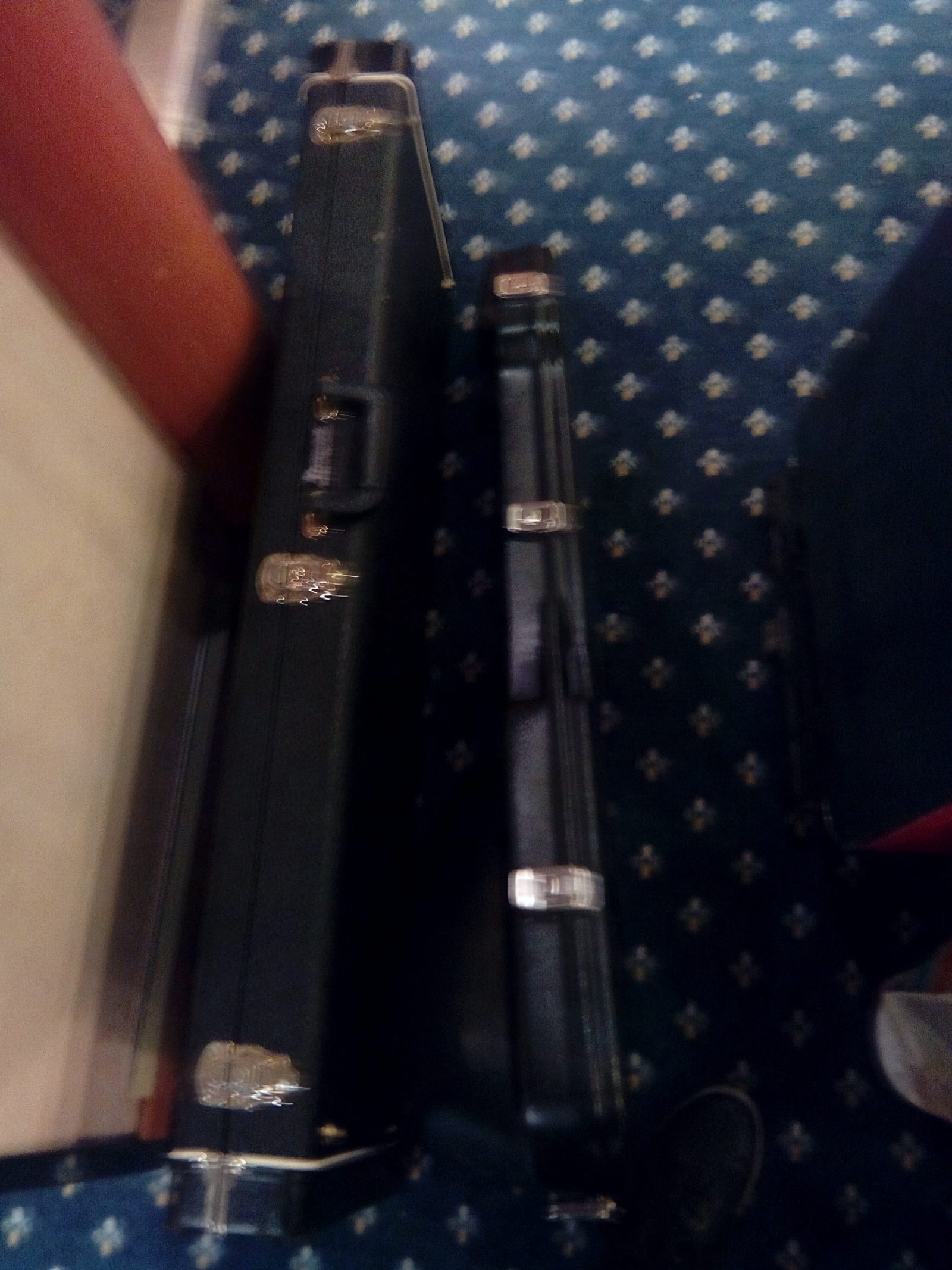 Skonnie Music, Guitar cases, Tour, World Travel, Connie Yerbic
