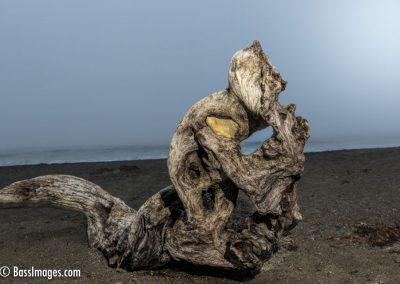 Moonstone driftwood-14