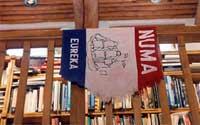 NUMA Flag