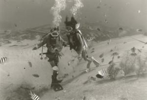 Dual Divers