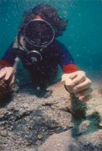 Diver shows gold coin found on the nieves of the 1715 fleet. Credit: John Halas