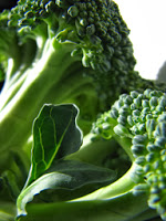 broccoli is a food that promotes brain activity