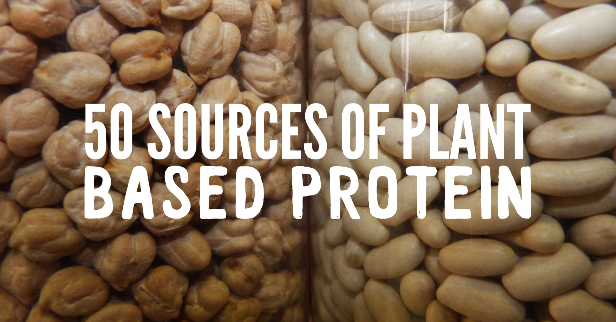 50 Sources of Plant Based Protein Header