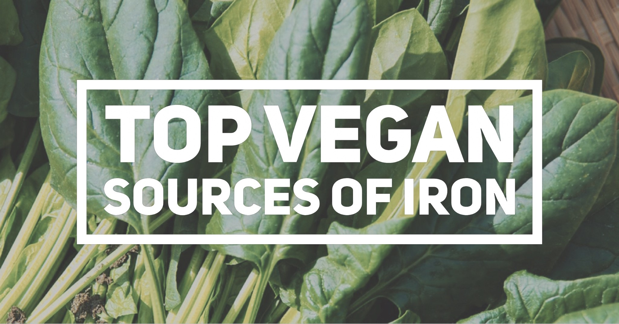 Vegan Sources of Iron Cover