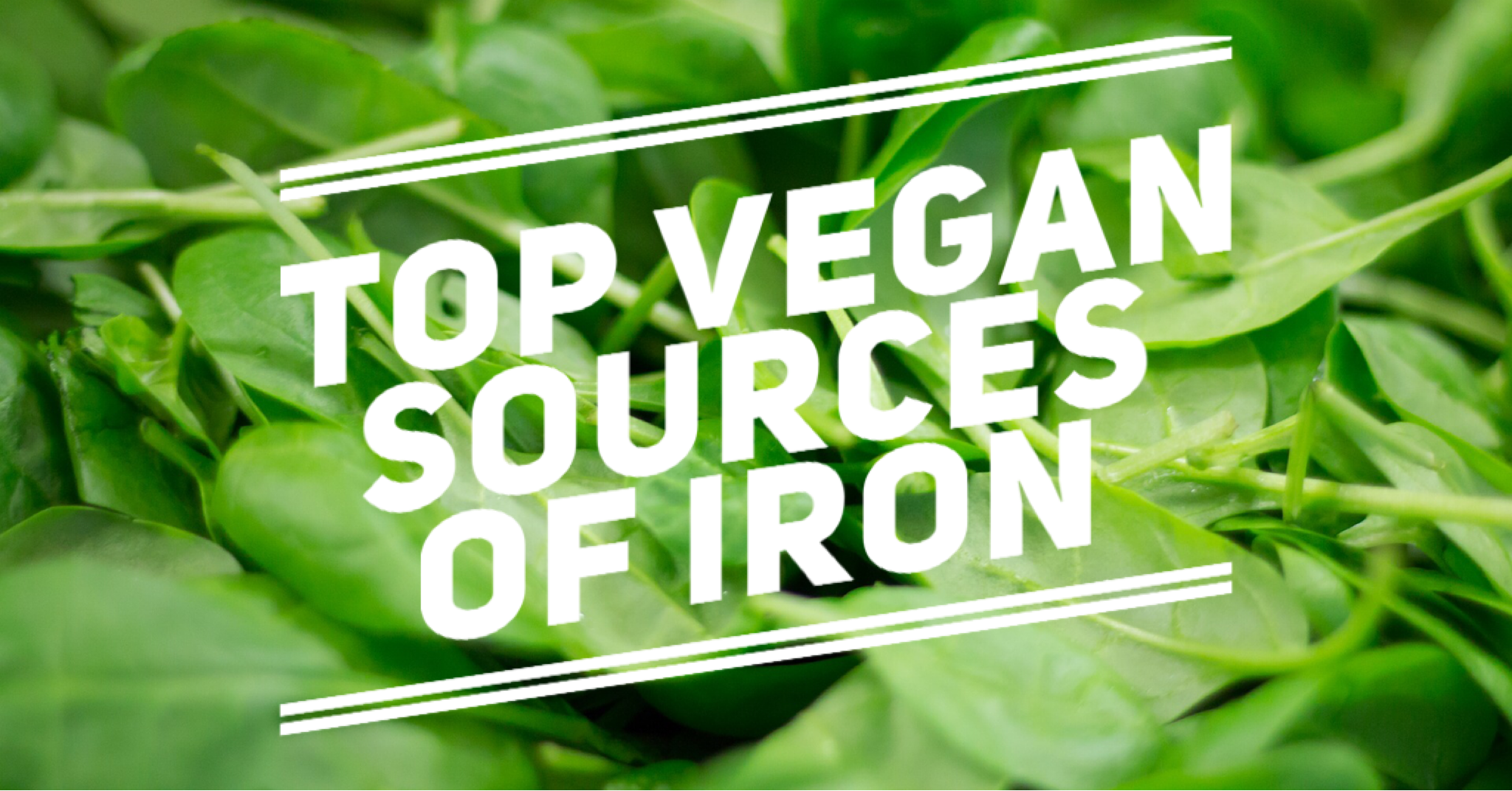 Top vegan sources iron list