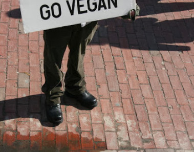 Why Vegans Love Talking About Veganism