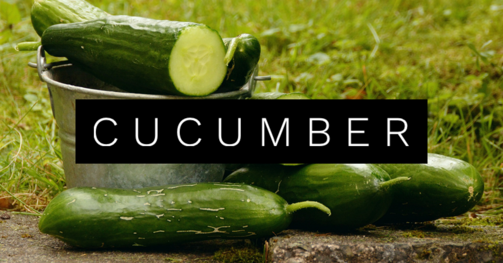 Cucumbers for Dogs