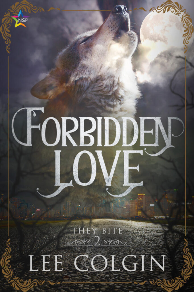 Forbidden Love book