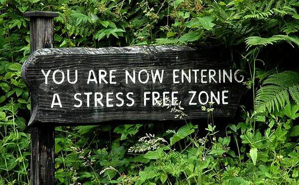 entering-stress-free-zone1
