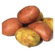 Fruit & Vegetables link