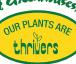 Swift Greenhouse Logo