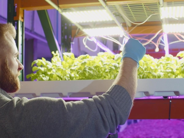 Ceres Greens grows hydroponic salad greens in their new indoor farm in Barre, VT