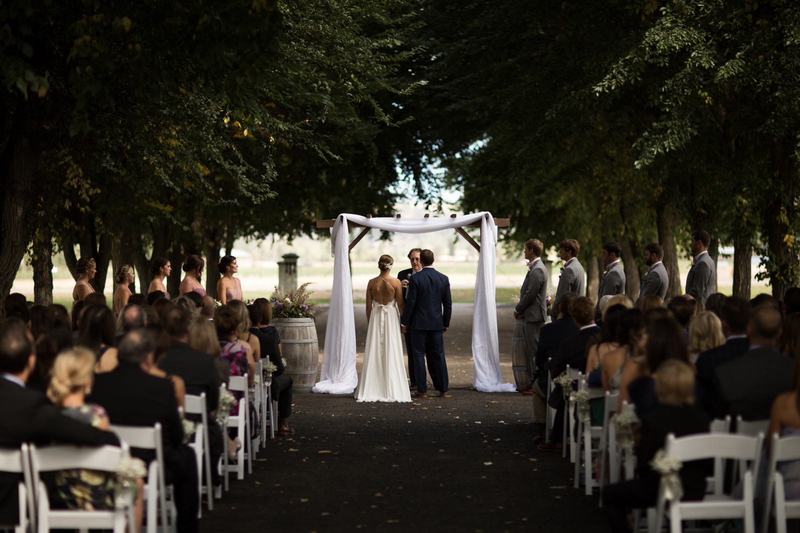33-willow_and_wolf_photography_nicole_and_gary_cranbrook_wedding_blog