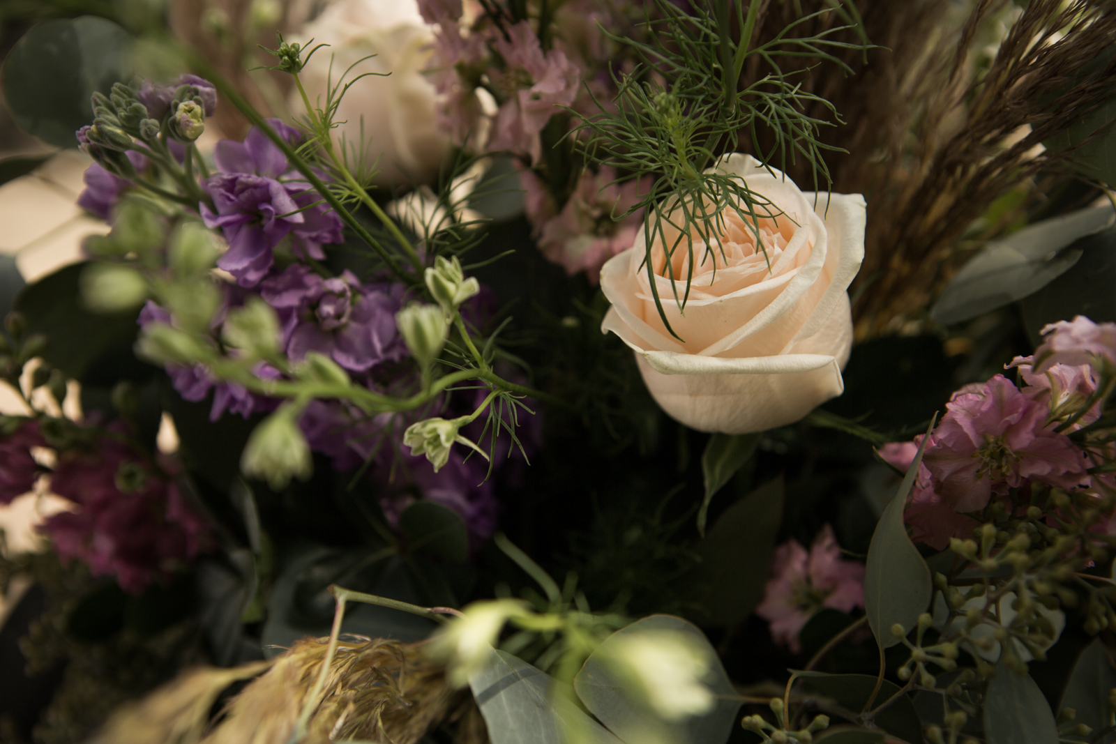 44-willow_and_wolf_photography_nicole_and_gary_cranbrook_wedding_blog